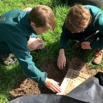 Children digging a hole in the ground