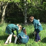 3 school children looking for bugs in the grass